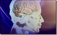 brainrightside.gif