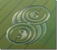 Crop Circle Yin Yang West Kennett, near Avebury, Wiltshire. Reported 21st June 2009