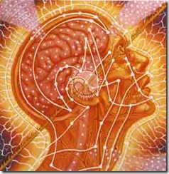 BODY, MIND, SPIRITDetail:Center of 3 panels.SACRED MIRRORS, Alex Grey, 1985